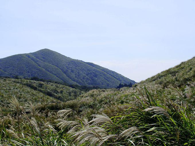 台北人の愛する大自然が残る山「陽明山」への行き方などは?