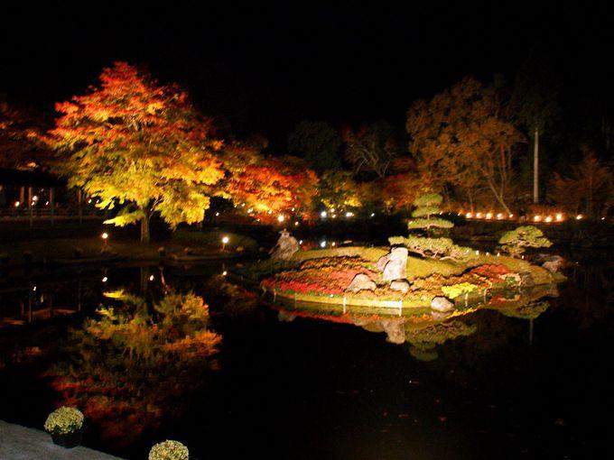言葉が出ないほどの美しさ!「菖蒲が池」に映るもみじ