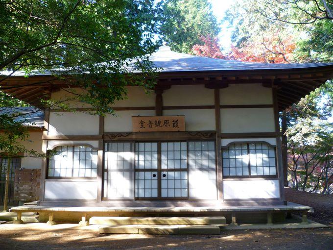 修善寺自然公園、こんな見どころも