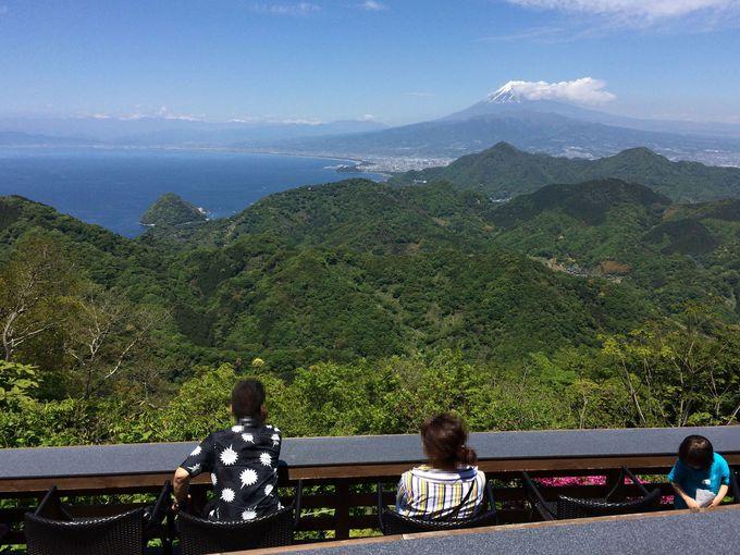 富士山の溶岩石で焼き上げた秘伝の味!名物「富士見だんご」
