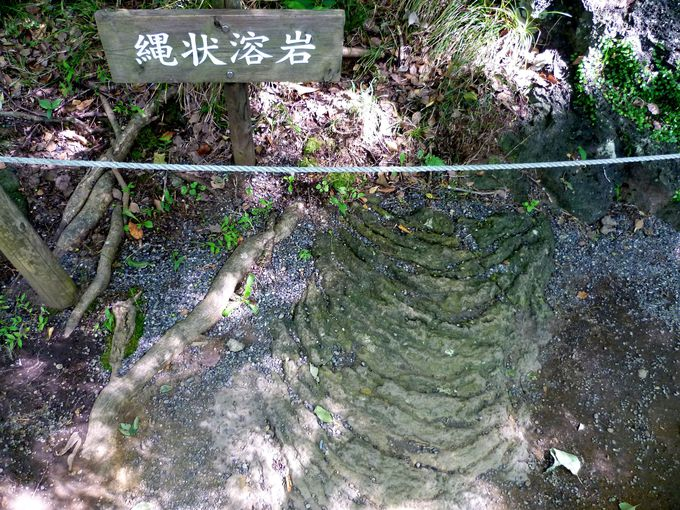 まるで別世界!楽寿園は面白くて貴重な「溶岩スポット」
