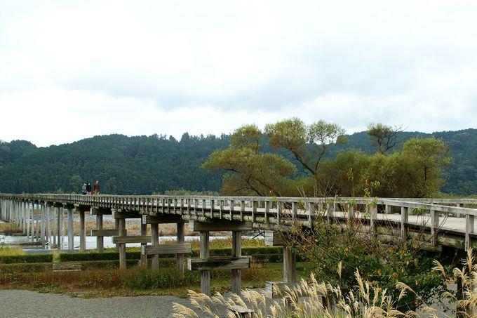 蓬莱橋の良さ、しっかり堪能しましょう