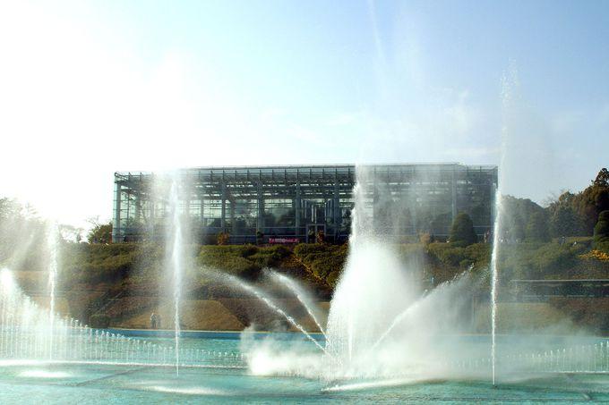 季節を問わず楽しめる!大温室「クリスタルパレス」と「大噴水ショー」