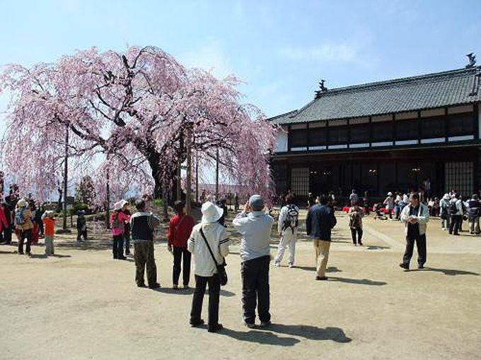 校舎と歌舞伎舞台の複合建造!長野県宝「旧座光寺麻績学校校舎」