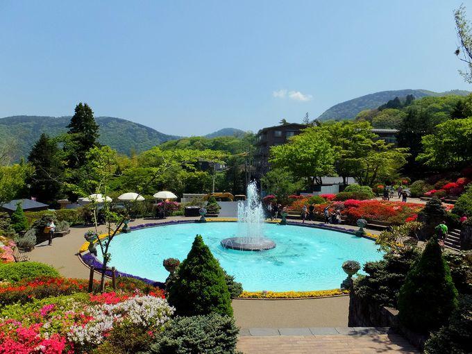 四季の花々が美しい「箱根強羅公園」は製作体験も楽しめる!