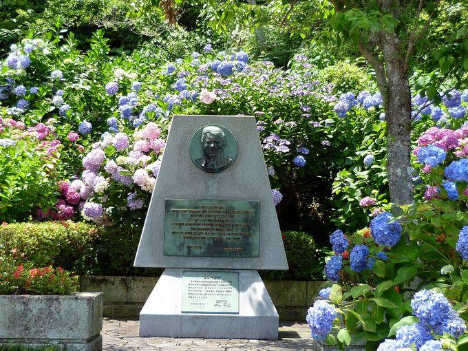 6月には「賑わい露店街」が楽しめる!下田の歴史を感じる「開国広場」