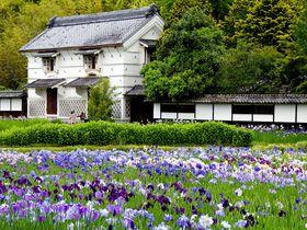 花と鳥と歴史ある庄屋屋敷で癒されよう!掛川市「加茂荘花鳥園(加茂花菖蒲園)」|静岡県|トラベルjp<たびねす>