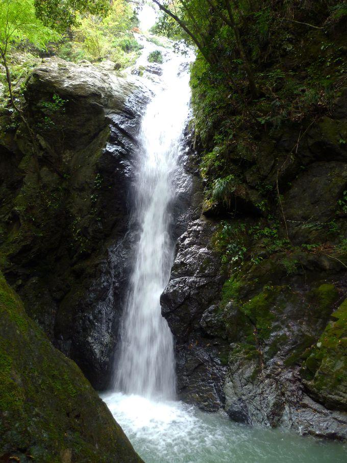 滝の魅力を残らず堪能!
