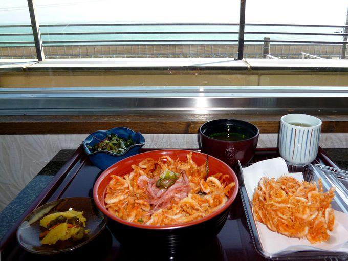 駿河湾が一望!かき揚げは桜えび100%『パノラマテラス 海の庭』