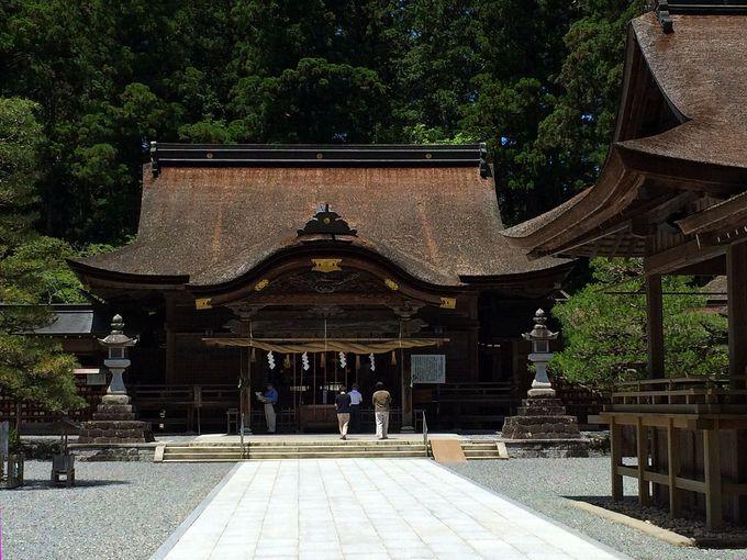 花菖蒲の名所!小國神社「一宮花しょうぶ園」