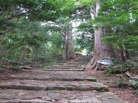 初心者におすすめ!世界遺産のパワースポット「熊野古道」の歩き方