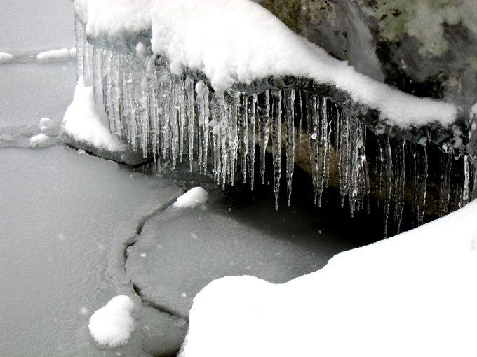 湖のしぶきまで凍る!十和田湖・しぶき氷