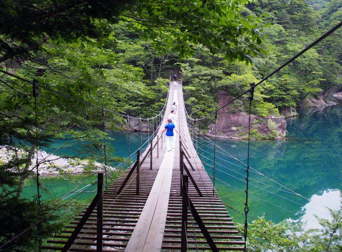 夢の吊り橋だけじゃもったいない!静岡・絶景&珍しい橋めぐり3選