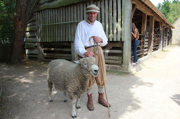 愛らしい動物たちとふれ合える「テューダー農場」