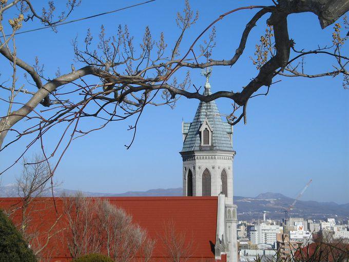 函館の山や街とのコントラストが素晴らしい