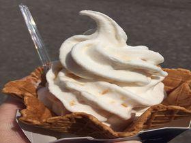牧場直営ならではの新鮮な味わい!大沼・山川牧場のジャージーソフトクリーム|北海道|トラベルjp<たびねす>