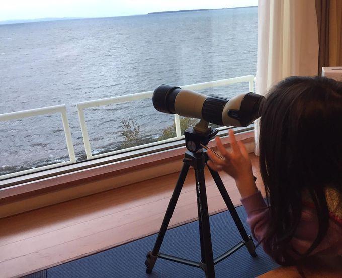 「何が見えるかな?」レイクビューのお部屋には望遠鏡が!
