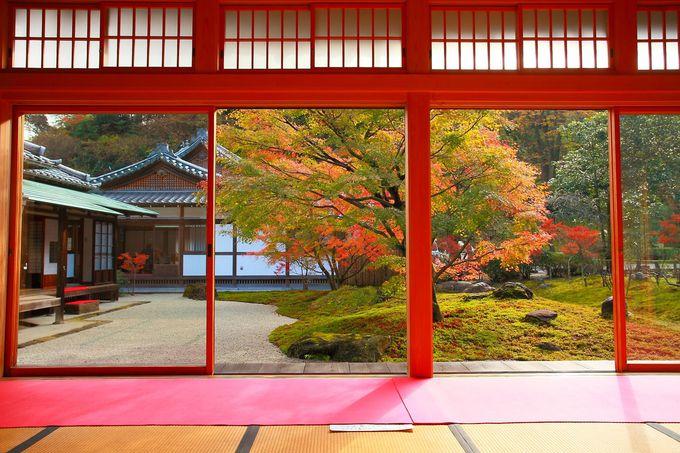 本堂と方丈と書院に囲まれた庭園は、素晴らしき和の庭園!