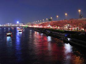 花見やパワースポットも!隅田川だけじゃない「隅田公園」の魅力|東京都|トラベルjp<たびねす>