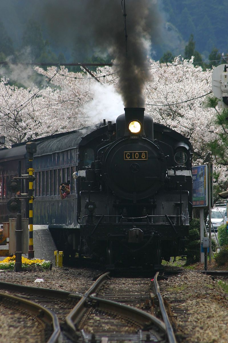 夢で見た黒煙の世界が広がる!静岡「大井川鐵道」撮影地15選