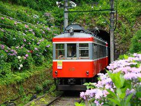 梅雨の時期必見!箱根登山鉄道撮影ベストスポット4選|神奈川県|トラベルjp<たびねす>