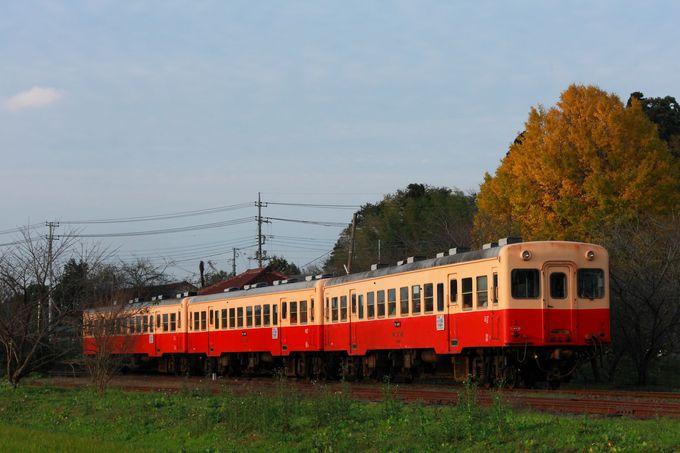 駅舎横のイチョウの木を含めた「上総鶴舞駅」