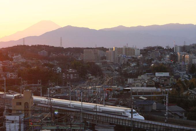 絶景が望めるハマのパワースポット「伊勢山皇大神宮」と「富士山神社」