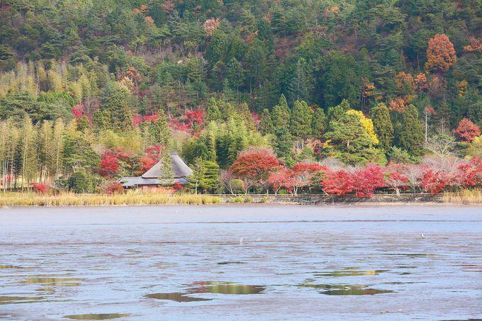 干潟状の「広沢池」と対岸の里山風景はどことなく懐かしさが漂う