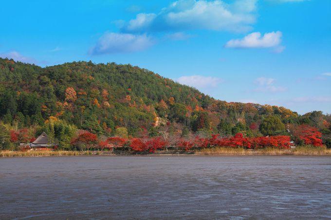 晩秋の澄んだ青空と色づく山肌!