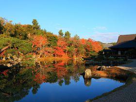 朝一番で訪問すべし!紅葉庭園が美しい京都嵐山の「天龍寺」|京都府|トラベルjp<たびねす>