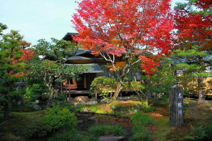 時間に余裕があれば「多宝殿」へ向かう廊下から見る庭園も!