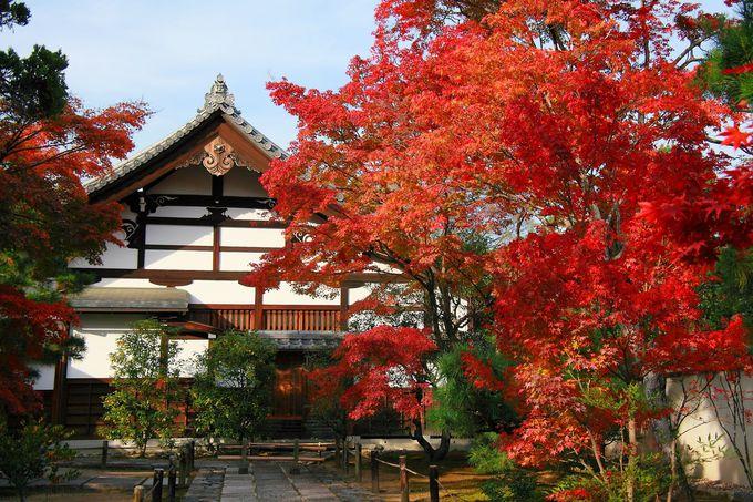 天龍寺には塔頭と呼ばれる小院も数多く存在