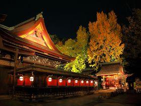 お手軽に紅葉ライトアップを見るなら?!京都「北野天満宮」|京都府|トラベルjp<たびねす>