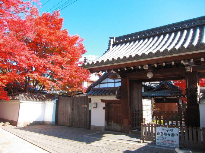 津田秀政により再建された津田家の菩提所「長興院」