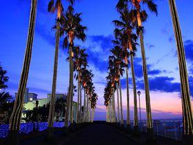 アクセス便利な人気リゾート!逗子・葉山の観光スポット10選