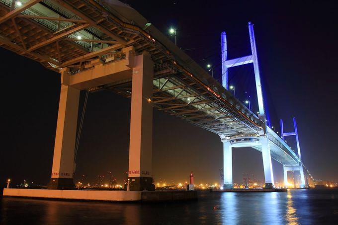 園内からライトアップされる横浜ベイブリッジを眺める!