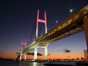 横浜港の夜景を一望!開放感抜群な眺めの「大黒ふ頭西緑地」|神奈川県|トラベルjp<たびねす>