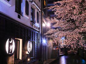 春の「高瀬川」沿いはまさに花魁道中!川面に浮かぶ桜の艶やかさに惚れ惚れ!|京都府|トラベルjp<たびねす>
