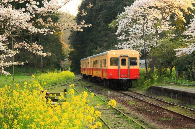 子供の頃に見たかのような駅周辺風景に感極まる!「月崎駅」