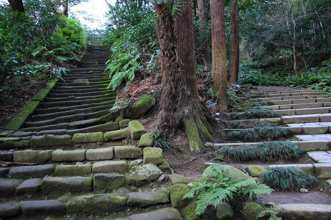 境内庭園へは貫録のある石階段で!