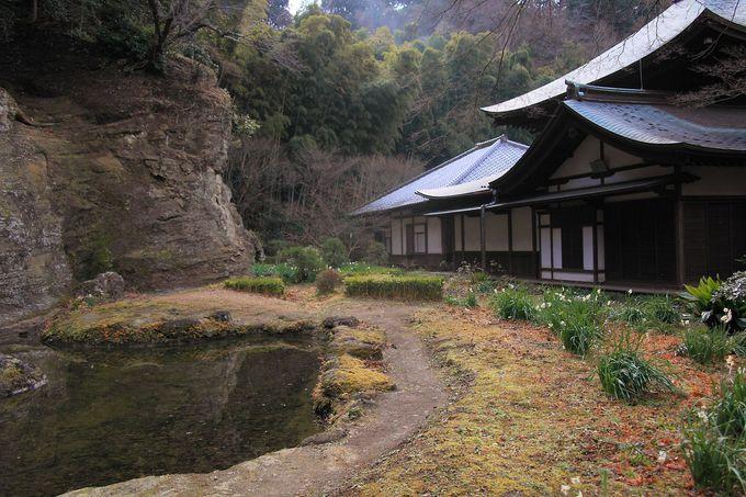 境内最深部には鎌倉特有の洞の姿も!