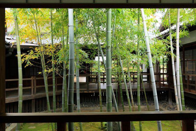 「妙顕寺」のクライマックス!「龍華飛翔の庭(四海唱導の庭)」