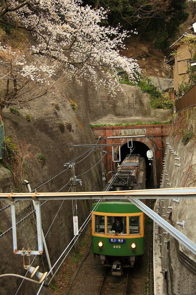 「江ノ電」唯一のトンネルと桜のコラボ!「極楽寺駅」付近