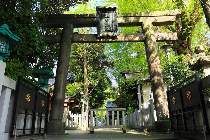 これが祭の本拠地だ!「鳥越神社」