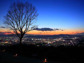 野生のシカと見る絶景!奈良「若草山」からの夜景を楽しもう!|奈良県|トラベルjp<たびねす>