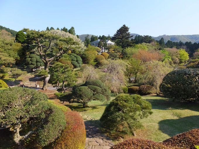 離宮跡地に広がる庭園と眺望が美しい「恩賜箱根公園」