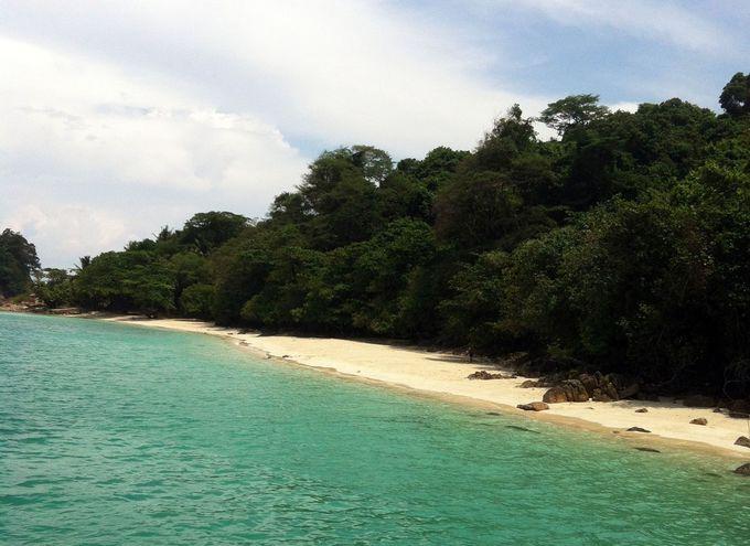自然そのまま!太陽に照らされたキラキラの海岸!