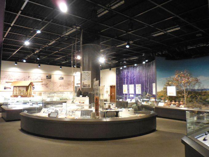 「常設展示室」で中野に暮らす人々の歴史や民俗にふれよう!