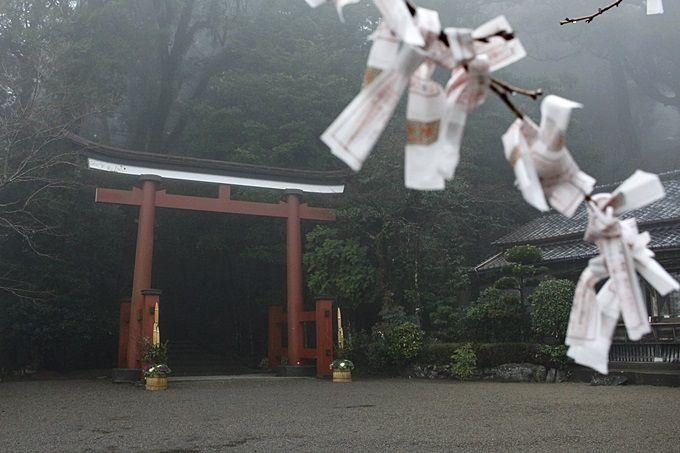 9.霧島東神社