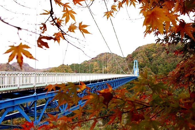 足が竦む高さから紅葉見物「竜神大吊橋」